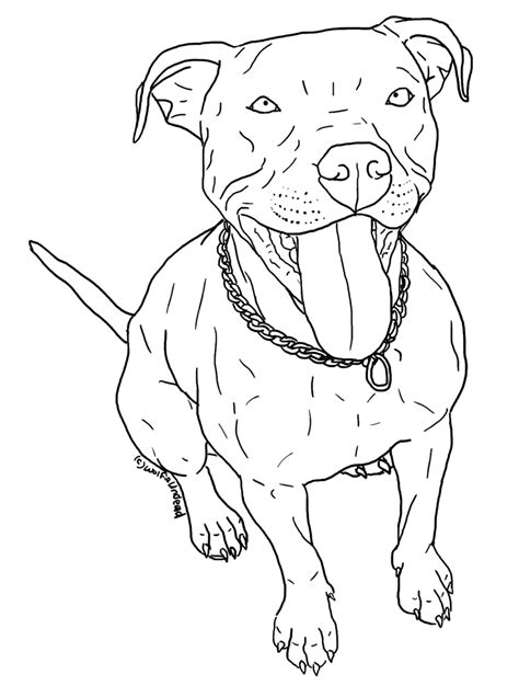 coloring pages pitbull puppies pitbull coloring pages printable coloring home