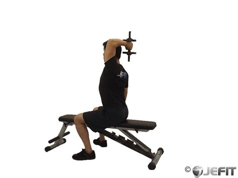 Twisting Dumbbell Bench Press by Dumbbell One Arm Triceps Extension Exercise Database