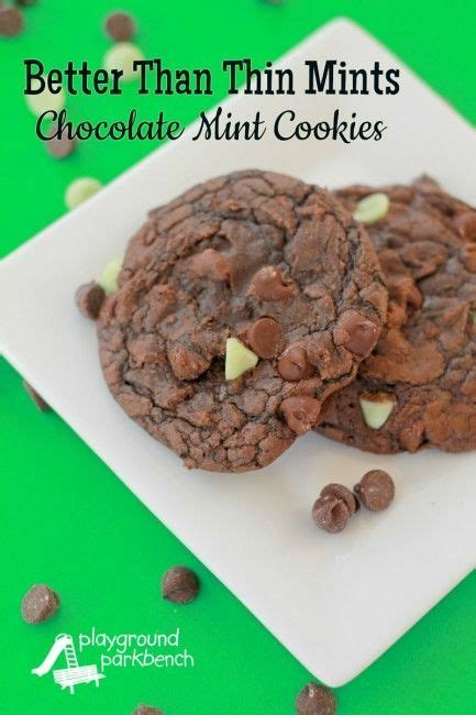 Thin Mint Recipe And All by Better Than Thin Mints Cookies Recipe Thin Mints