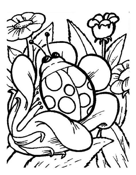 imagenes para dibujar medio dificiles coloriage coccinelle 224 imprimer gratuitement