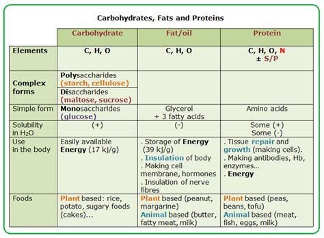 experiment 9 carbohydrates 29 nutrients carbohydrates fats and proteins