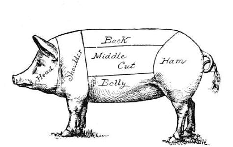 the art of butchery porkminga skill building hub