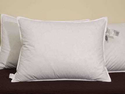 Pacific Coast Touch Of Pillows by Pacific Coast Touch Of Standard Pillow Set 2 Pillows