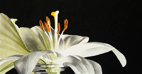Vase Of Lilies by Realism White In Vase New Watercolor