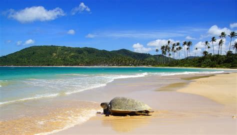 i 10 spiagge piu mondo le spiagge pi
