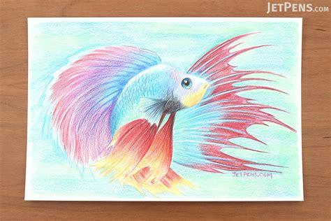 prismacolor premier verithin colored pencils prismacolor verithin color pencil 24 color set jetpens