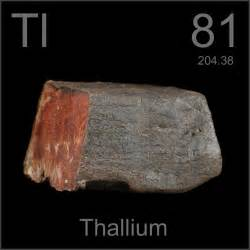 Alkaline Earth Metals On Periodic Table 81 Thallium Ti Elements4kids