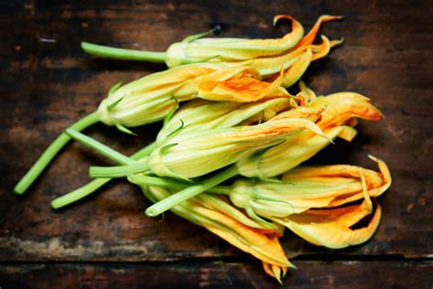 come si puliscono i fiori di zucca come pulire fiori di zucca come fare cucina