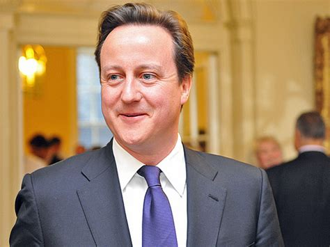 prime minister david cameron prime minister david cameron david cameron was appointed