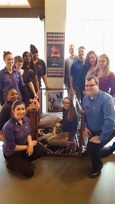friendly hotels asheville aloft asheville downtown named top pet friendly hotel by usa today and bringfido