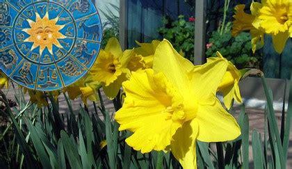 oroscopo dei fiori oroscopo dei fiori qual 232 la pianta dell ariete leitv