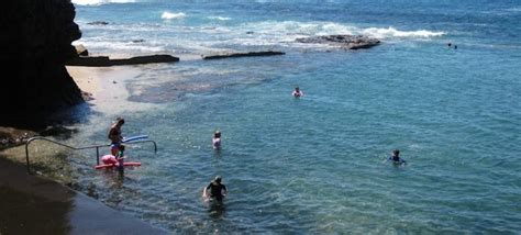 boat harbour kurnell dog friendly boat harbour rock pool near gerringong berry south