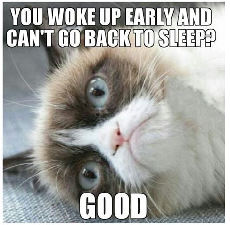Good Meme Grumpy Cat - woke up early and can t fall back asleep good grumpycat