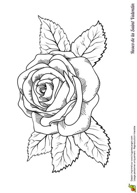 Coloriage Grande Rose Saint Valentin Sur Hugolescargot Com
