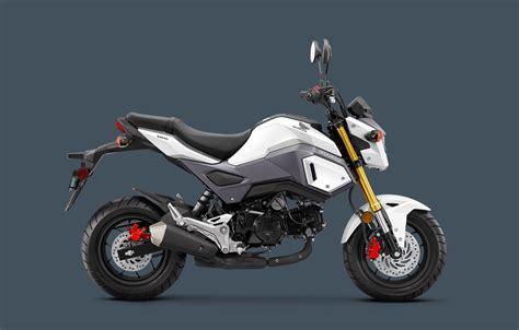 honda grom honda restyles the grom for 2017 adventure rider