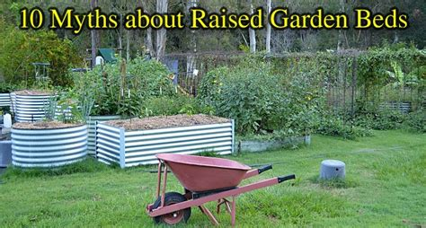treated pine vegetable garden 10 common myths about raised bed vegetable gardens or planters