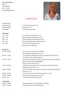 Lebenslauf Muster Professional Lebenslauf Lebenslauf Beispiel