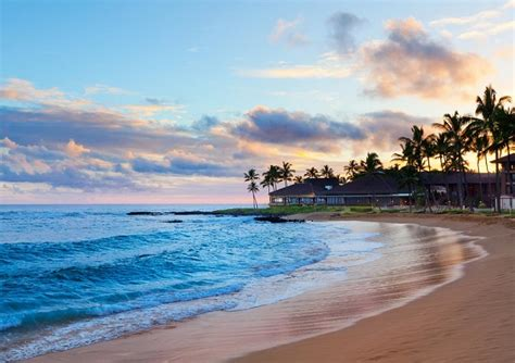 Trip To Hawaii Sweepstakes - win a trip for four to hawaii whole mom