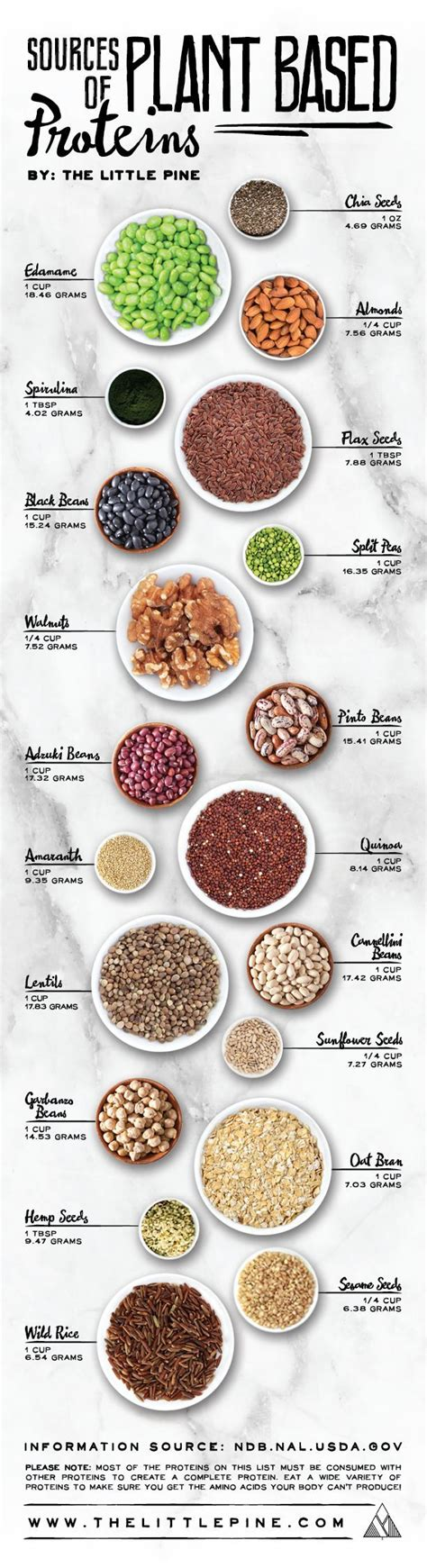 whole grains with high protein best 25 protein list ideas on protein in food