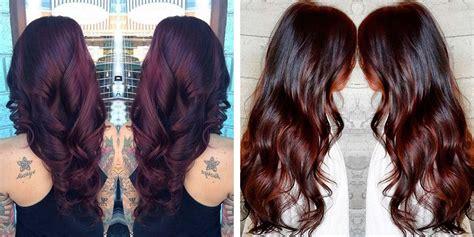 cool hair color ideas  brunettes