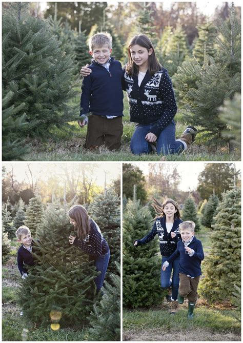 christmas tree farms in mystic ct a mystic family session at a tree farm sawin photography