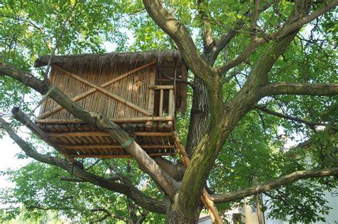 sull albero prezzi la casa sull albero casette di legno costruire una