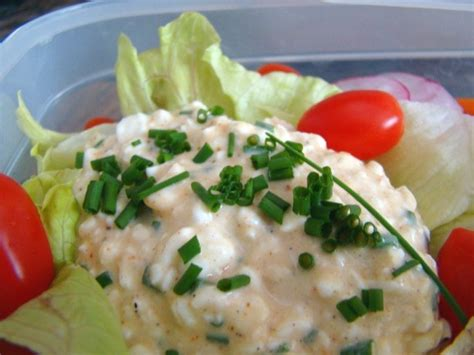 cottage cheese with chives recipe food com