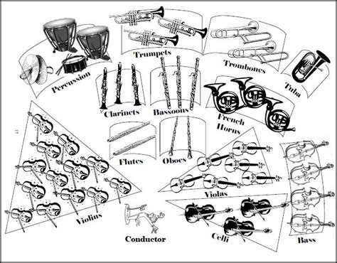 Coloring Pages Instruments Of The Orchestra | sections of the orchestra