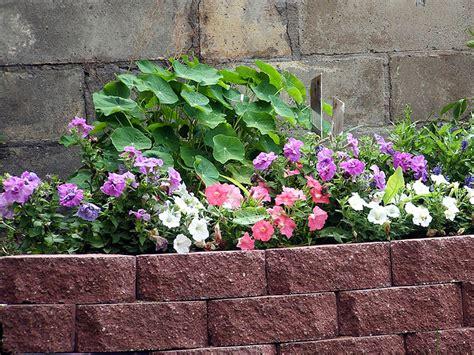 Garden Borders Ideas Garden Edging Ideas Transform Your Garden Today
