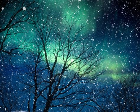 Nature In Lights by Nature Photography Winter Photography Northern Lights Snow