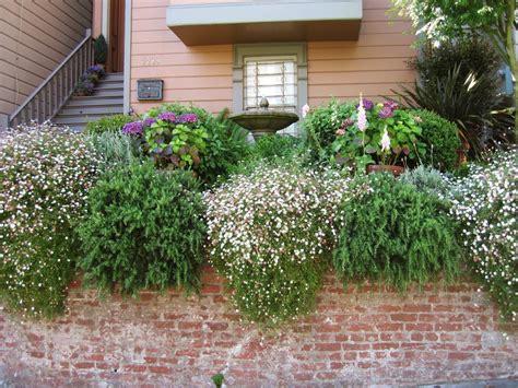15 innovative designs for courtyard gardens hgtv fabulous front yards from hgtv fans hgtv