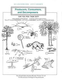 ecology worksheets for high virallyapp printables
