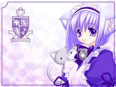cute anime cat girl wallpaper cats hd litle pups