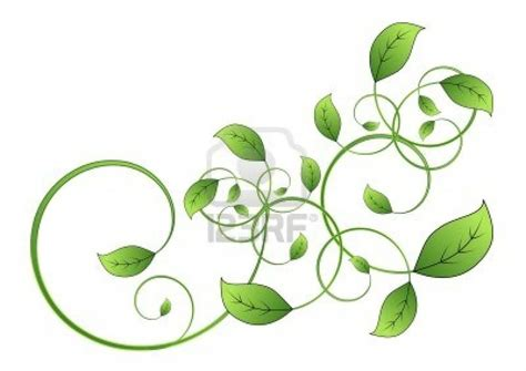shamrock vine tattoo designs on back celtic leaf vine on right back side