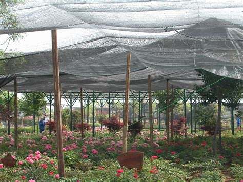 Aliexpresscom Buy Sun Shade Sail Cloth Fabric Gazebo For Shade Cloth Vegetable Garden