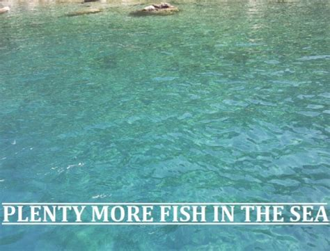plenty of fish forever it will be plenty more fish in the sea on