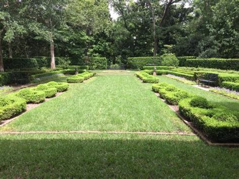 Bayou Bend Collection And Gardens by Photo1 Jpg Picture Of Bayou Bend Collection And Gardens
