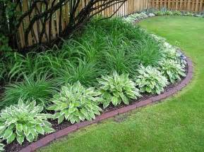 Landscape Edging Plants Best 25 Low Maintenance Landscaping Ideas On