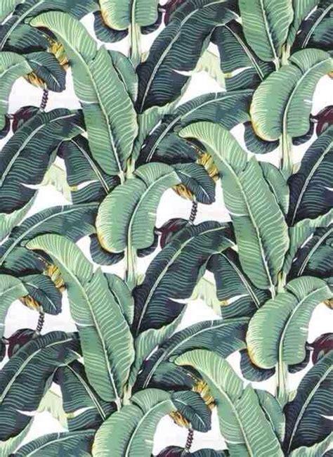 banana plant wallpaper blanche devereaux s bedroom wallpaper banana plant
