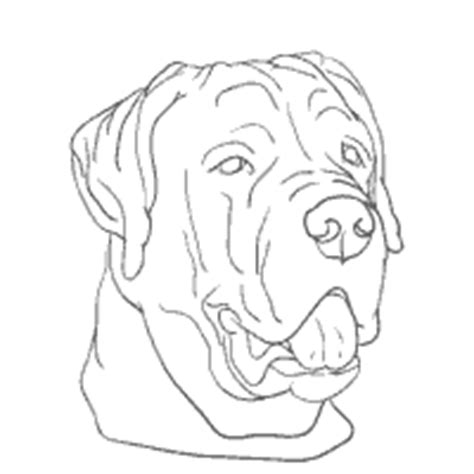 rottweiler coloring book rottweiler coloring coloring pages