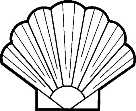 Shell Outline by Seashell Shell Clipart Image Clipartix