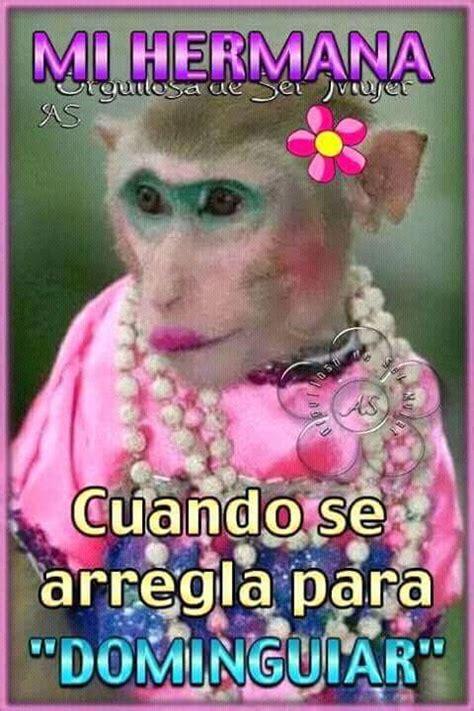 imagenes de buenas noches para mi hermana memes categoria animales memes en internet crear meme com