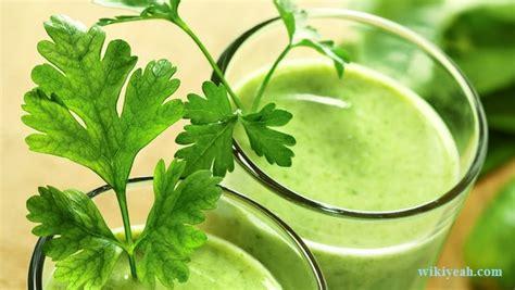 Cilantro Detox Headache by 7 Best Detox Diet Drinks For Weight Loss That Taste