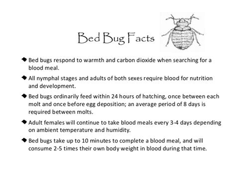 what causes bed bugs to come bed bugs in schools