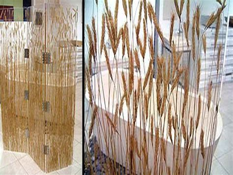 unusual net curtains unusual curtains for attractive curtain shower ideas