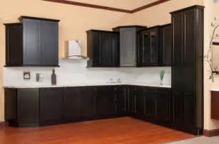 Rta Kitchen Cabinets Cozy Kitchen Cabinets Rta Photos Design Ideas Dievoon