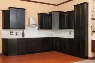 Clean and contemporary shaker door cabinets in white or java finish