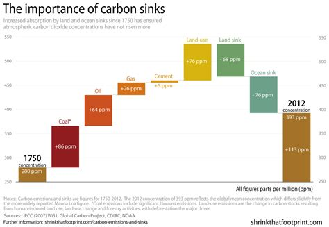 Carbon Dioxide Sinks a history of carbon emissions and sinks