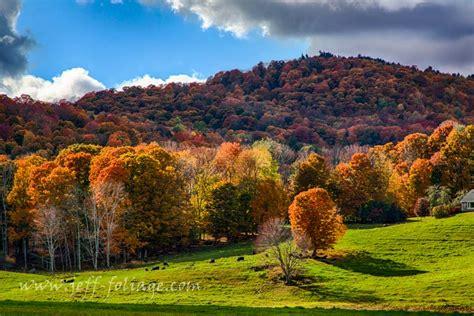 new fall colors 29 sept fall foliage report new fall foliage