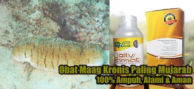 Obat Tradisional Maag Parah obat maag kronis herbal terbukti 100 uh sembuhkan